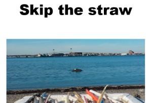 1_straw